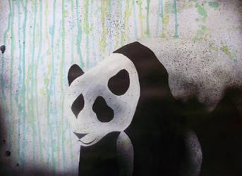 Panda n.1 by valuca