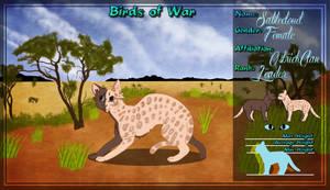 BoW Wildcloud App