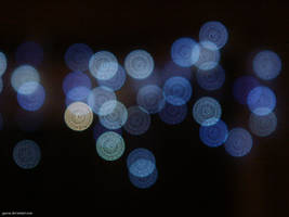 Christmas Lights by jgavac