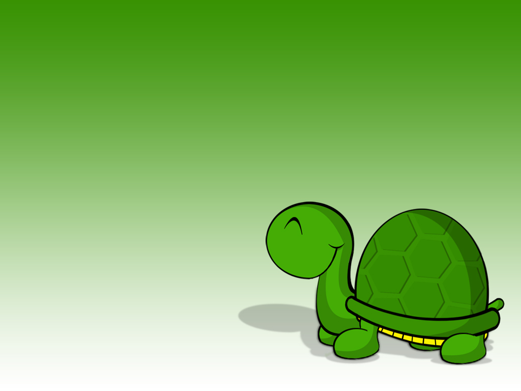 Turtle Wallpaper By Shaggy87