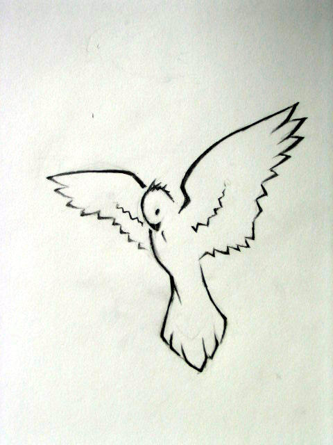Dove Drawings Tattoos