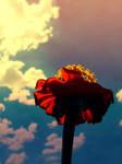 pure bliss. by o0-Rawrtastic-0o