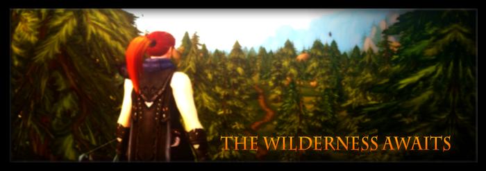 The Huntress - Aerie Peaks AA Banner