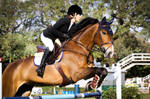 Campeonato Paulista de Amadores e Cavalos Novos