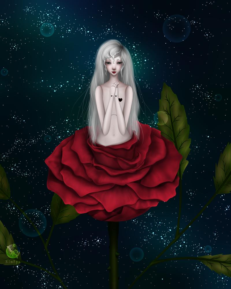 Rose by NImFpa