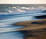 come ashore