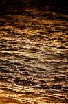 shimmery gold