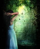 Grove by Dream--Window