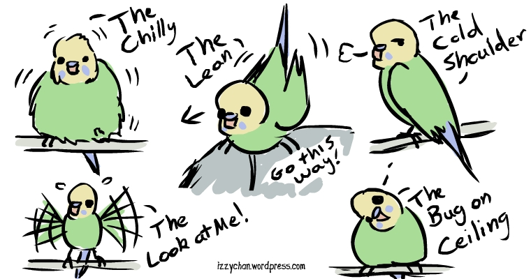 budgie body language by izumizagari on deviantart ship clipart images ship clip art free