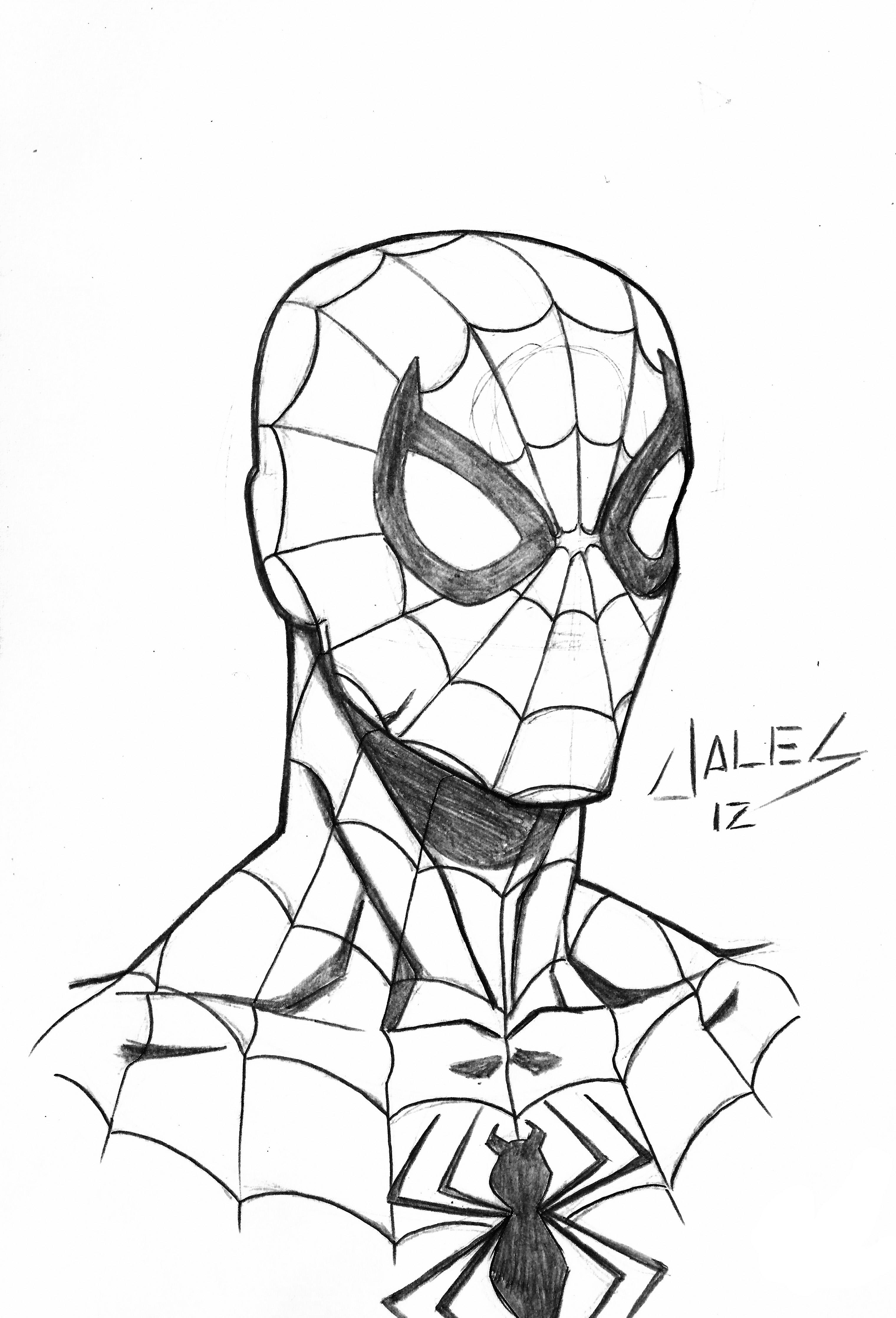 Spiderman Face Line Drawing : Spider man face by robertojales on deviantart