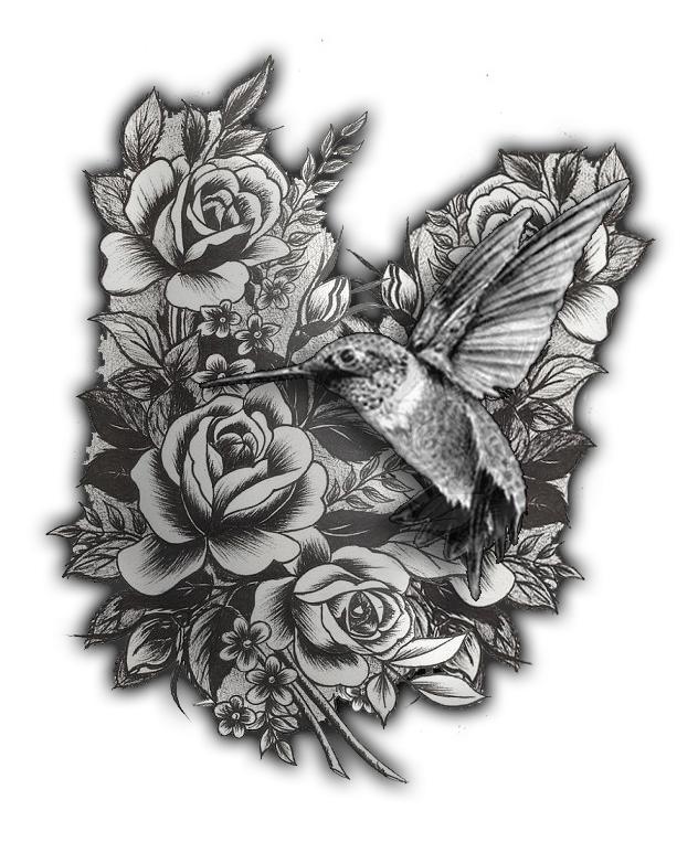 51b922041 Hummingbird And Roses Tattoo Idea #2 by Jackobaggy on DeviantArt