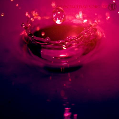 Splash by PaulDavis