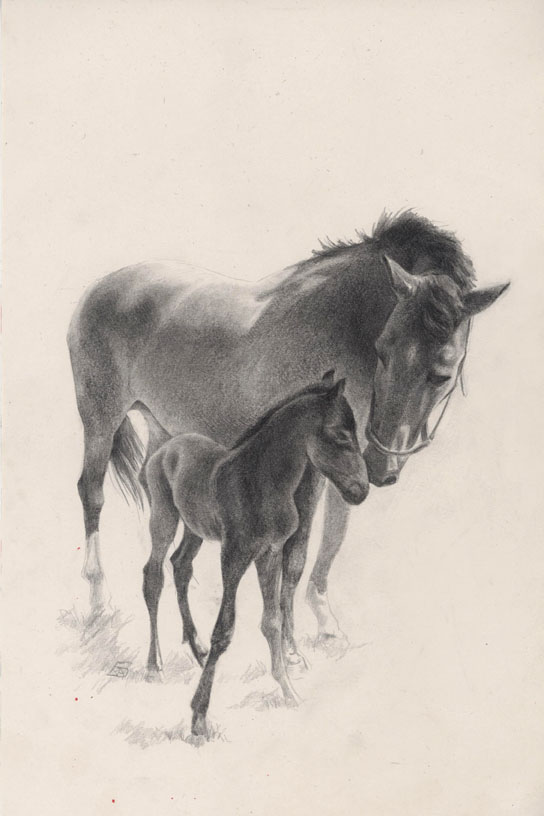 Mare and Foal by Bergholtz