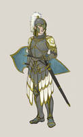 Elven armour for Turid.