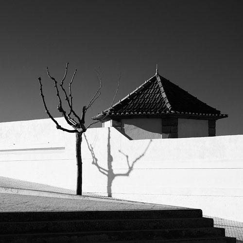 Aveiro, Portugal, 2011 by philipz