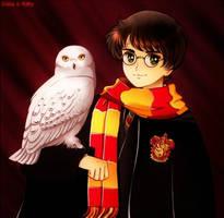 Harry Potter by kgfantasy