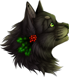 [Warrior Cats] Hollyleaf