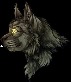 [Warrior Cats]Greystripe
