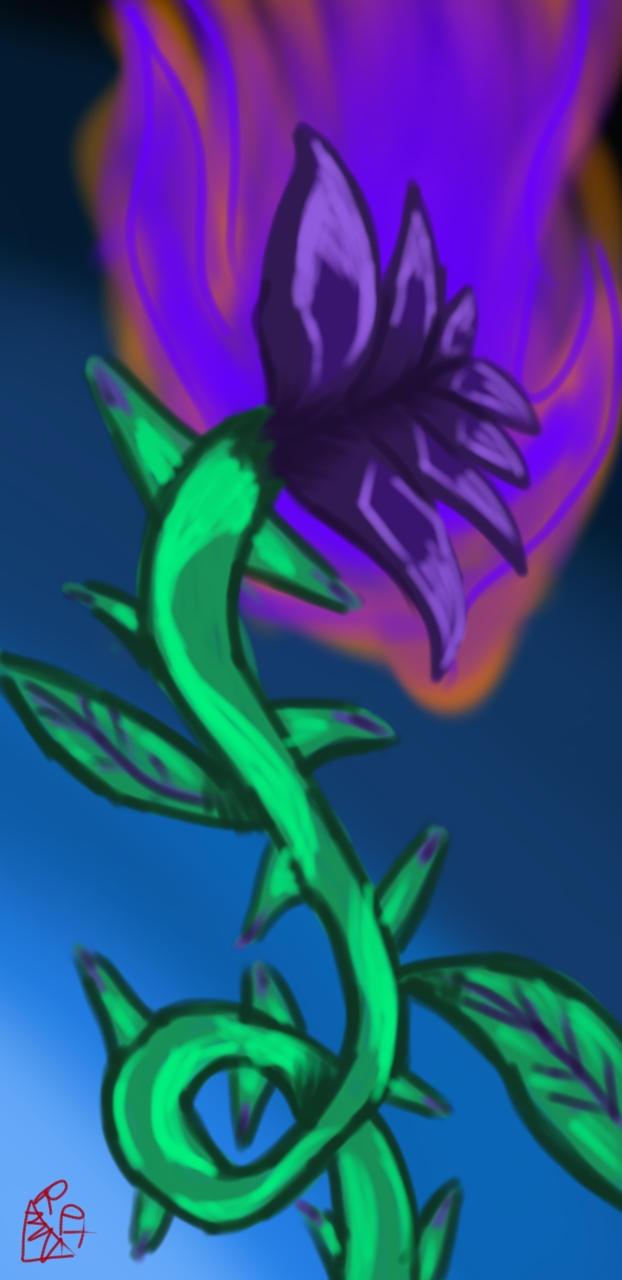 Toxic Dark Purple Rose