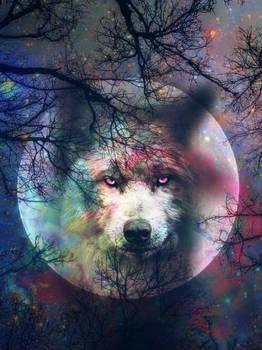 Lobo by hanjorafael