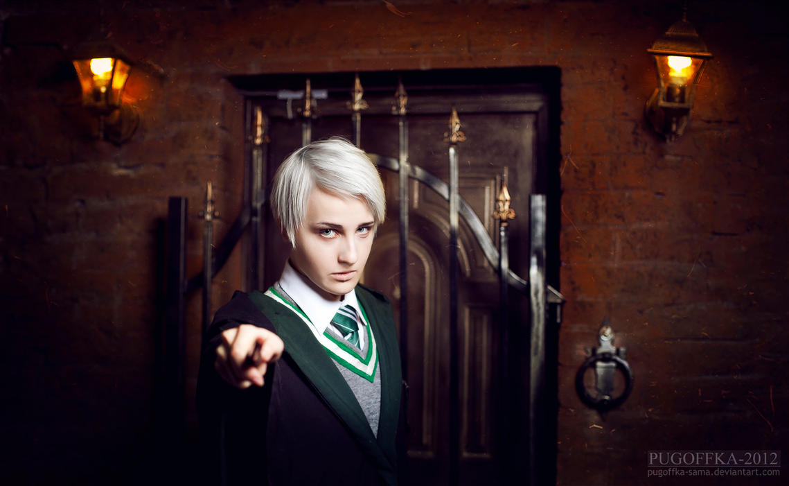 Harry Potter - Draco Malfoy by Pugoffka-sama