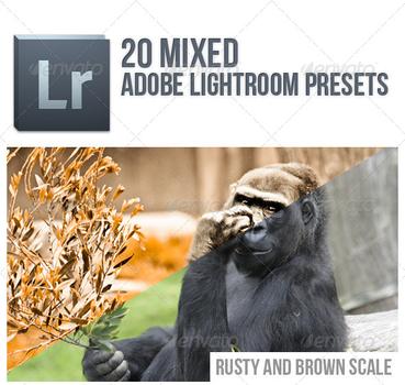 20 Mixed Lightroom Presets by FashionVictim89