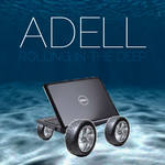 Adell, Rolling in the Deep