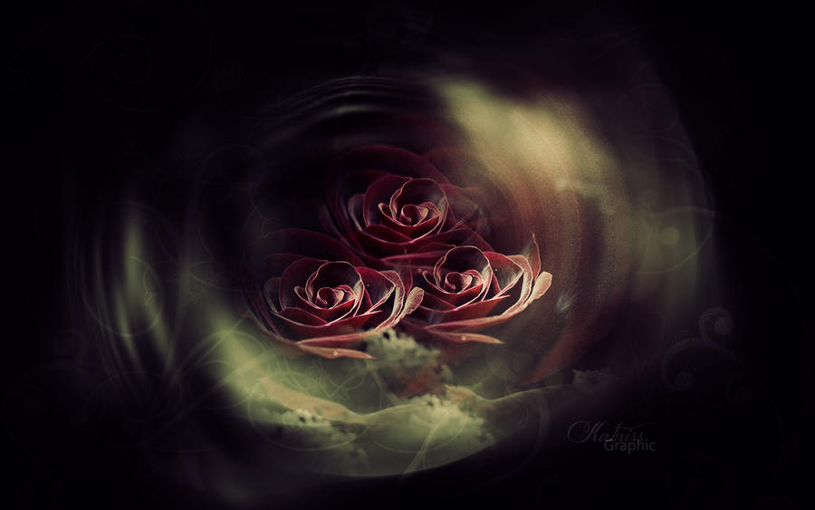 texture roses by KateKatnisspage