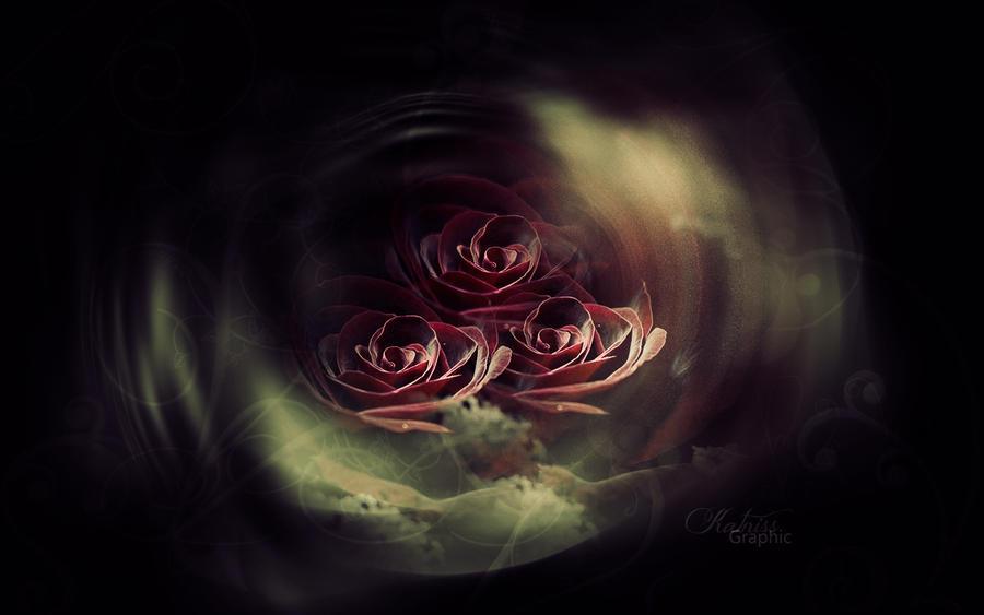 texture roses by KateKatnisspage