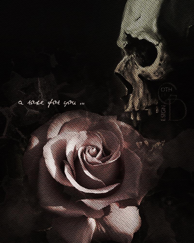 rose tex by KateKatnisspage