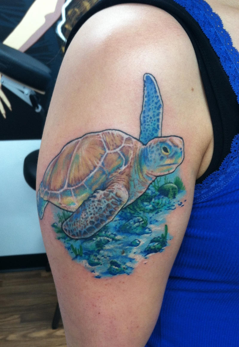 And then, there was a Sea Turtle