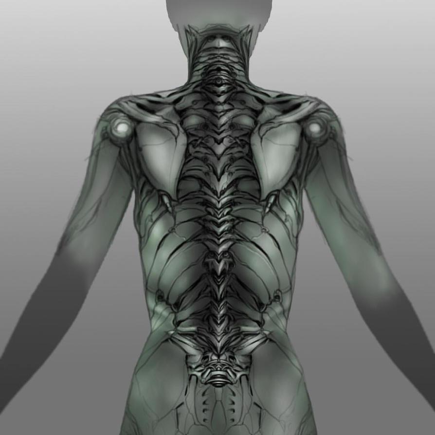 Exoskeletal design by adammdesigns