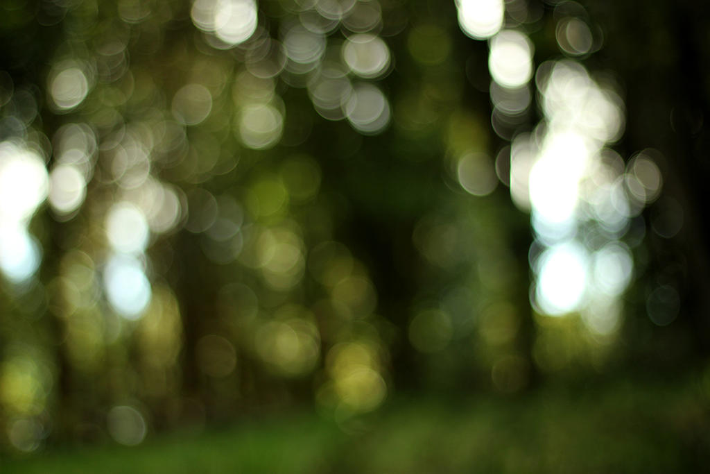 Green's Bokeh by sandrukiwi