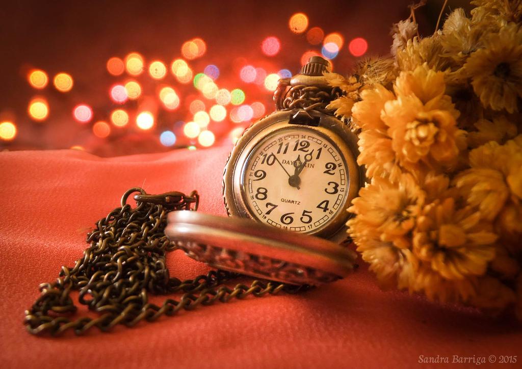 The Pocket Watch by sandrukiwi