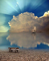 Reflection NATURE