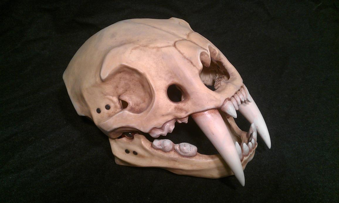 Saber Tooth Skull Tattoo Sabre tooth tiger skull helmet