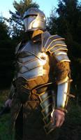 KnightArmour5