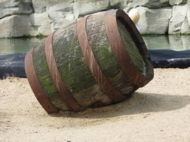 Barrel in the sand 1 by mrscats