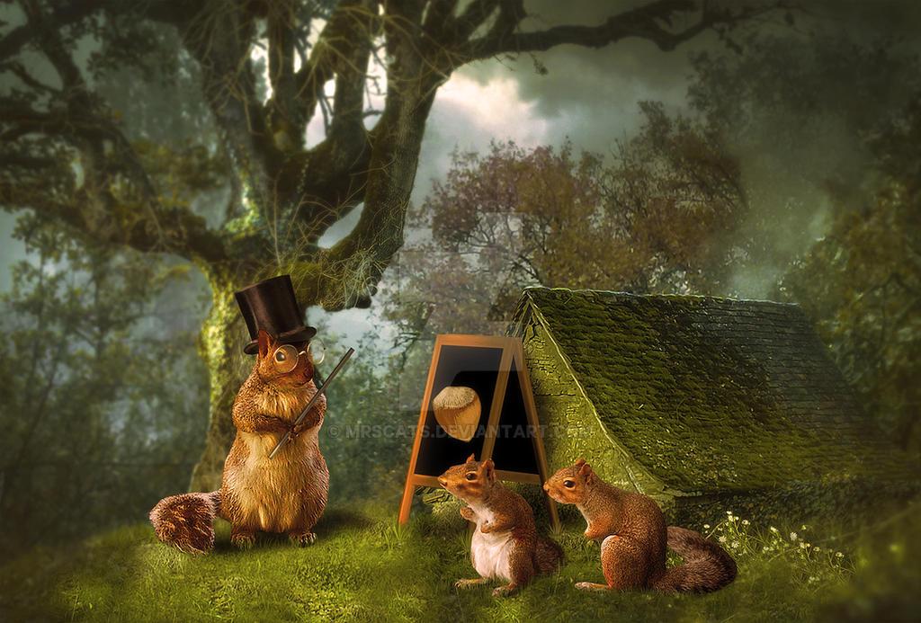 Squirrel School by mrscats