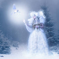 Winterfairy by mrscats