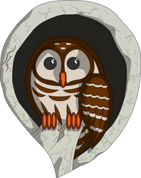 Selene the Owl
