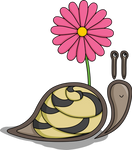 Sadie the Snail by vhartley