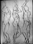Life drawing studies by Rahimi001