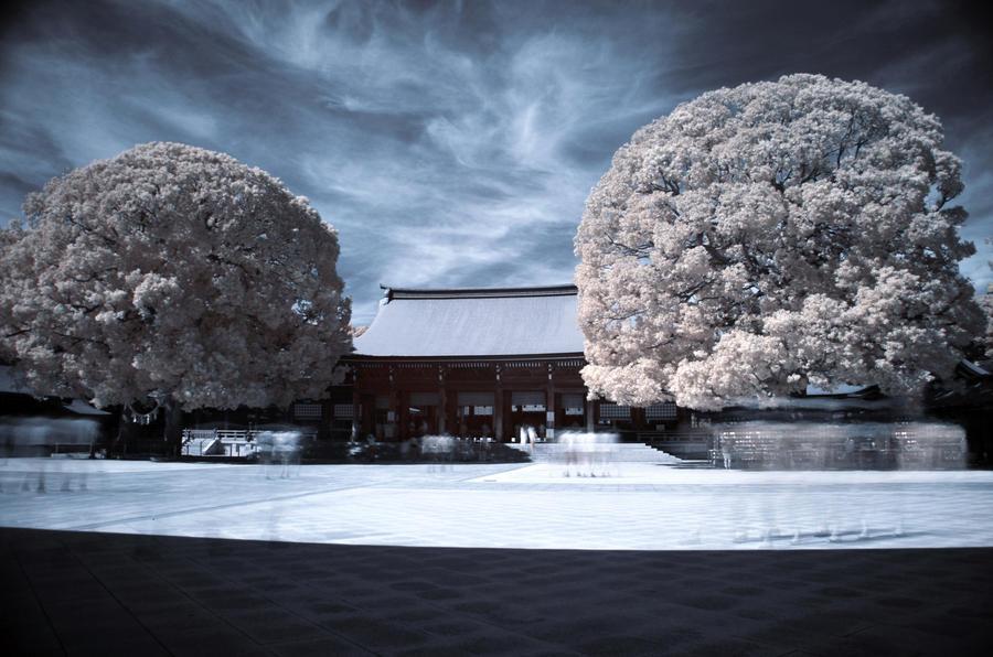 Tokyo, Meiji Shrine by Wunderling