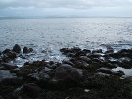 A Rocky Shore... by LadyPaigeTigeress