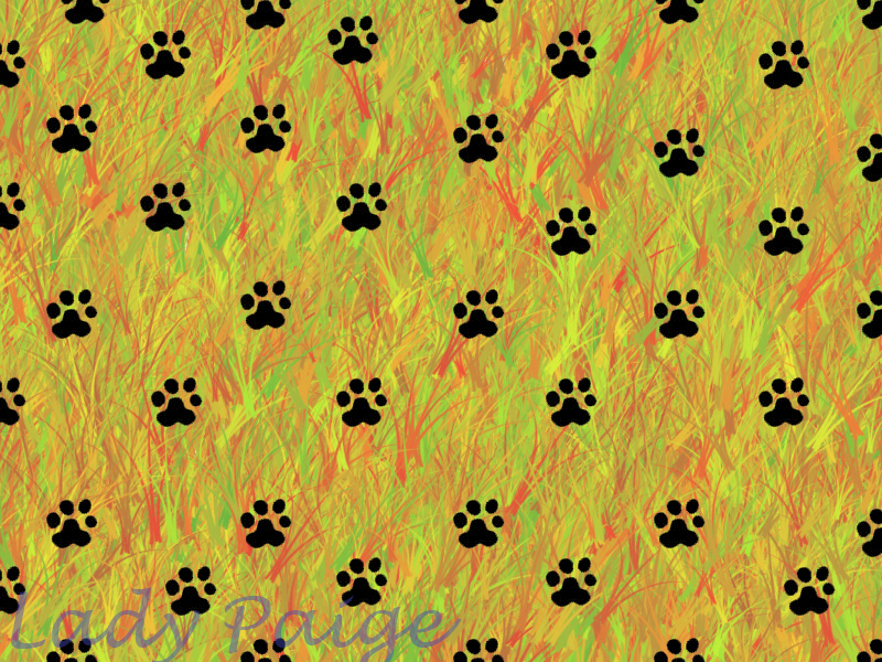 Tiger paw print background - photo#20