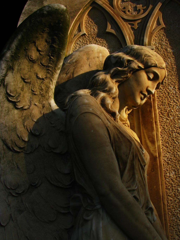 Golden Angel by the-cat-whisperer