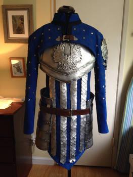 Warden Armor WIP