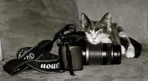 Budding Photographer by MissSpocks