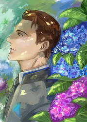 Hydrangea by SeaCobalt